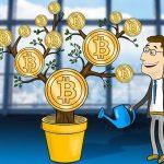 Инвестиции в криптовалюту 2019, с чего начать, где купить и другие вопросы.