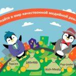 Особенности работы с Pingmedia