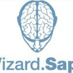 Автоматическое продвижение с Wizard от Sape